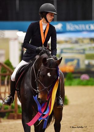 Cassano Z- 2017 National Horse Show High Jr/Ao Champion