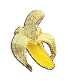 Kiss_my_banana_l_140_x_100_cm_oel_auf_ausgesägter_alu-dibondplatte