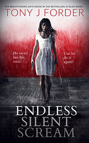 Ebook - Endless Silent Scream.jpg