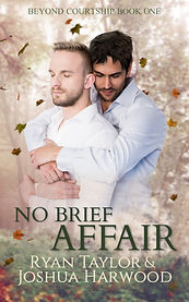 Book Cover - Cheriefox - No Brief Affair