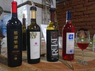 Ruta del vino mexicano