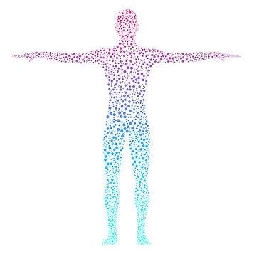 body cells image.jpg