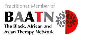 BAATN logo.jpg