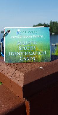 Invasive Plant ID Key