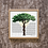 "Thumbnail: ""Tree of Life"" Ketubah"