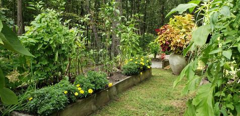 GardenGallery9.jpg