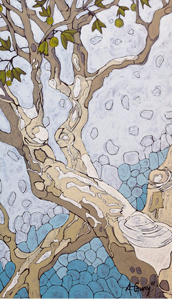 Sicamore Branch