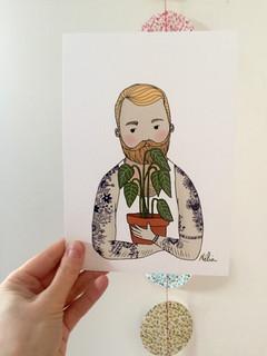 Barbu plantu