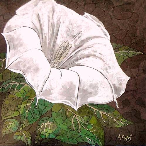 """8"""" X 8"""" """"Moonflower"""" Giclée print"""
