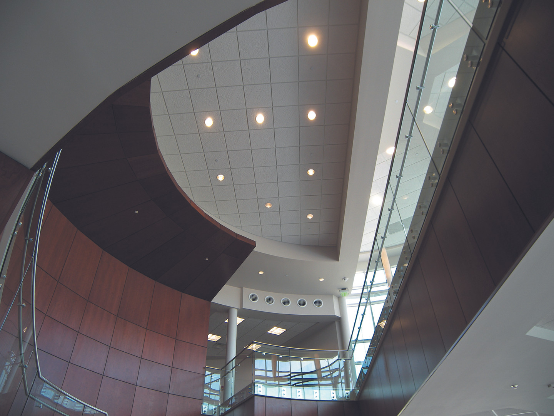 JMU+CISAT+Dining+Hall+Ceiling.jpg