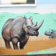 rhino by Nik Vaughn.jpg