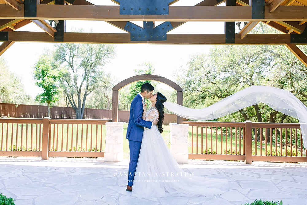 veil and aline wedding dress