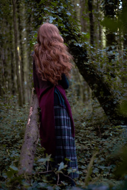 step into the woods.jpg