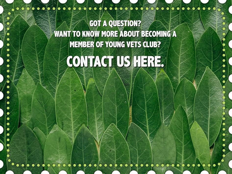 Contact Us .jpg