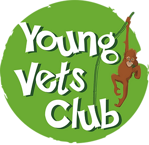 YVC_monkey_logo_high res.png