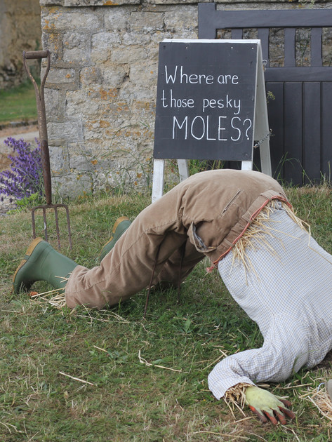 Where Are Those Pesky Moles?