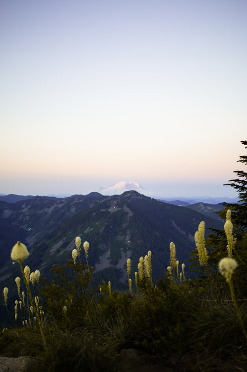 Good Morning Mt. Rainier