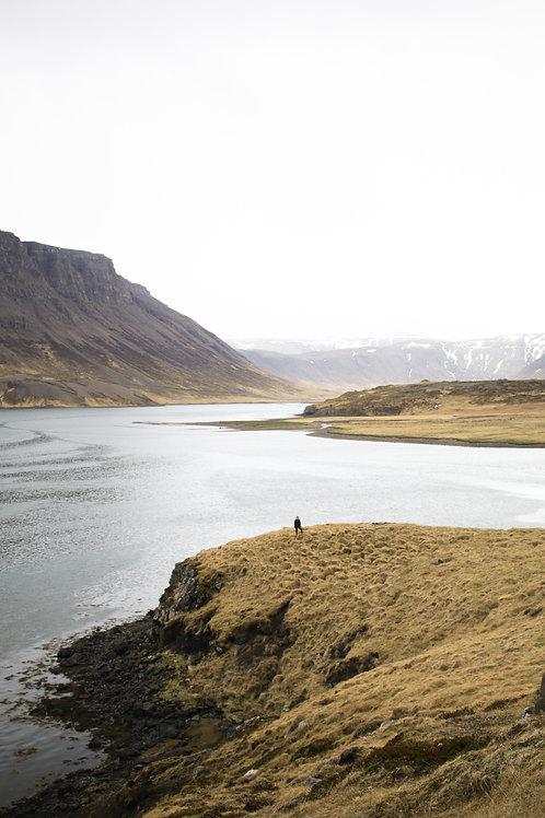 Golden Fjords