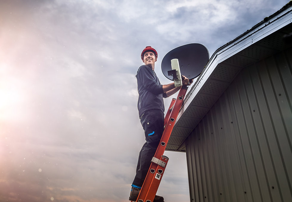 Cheerful young man standing on ladder an