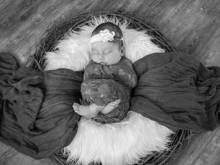 Why I Love Photographing Babies.