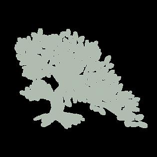 GE_tree_moss_nobg.png