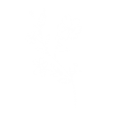Flower_WC_1.png