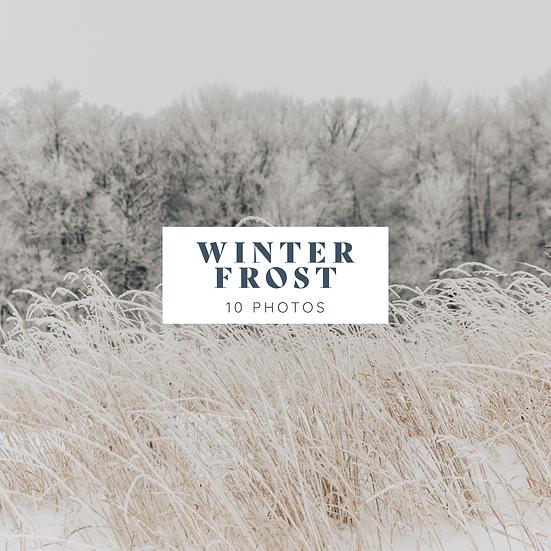 Winter Background Photos