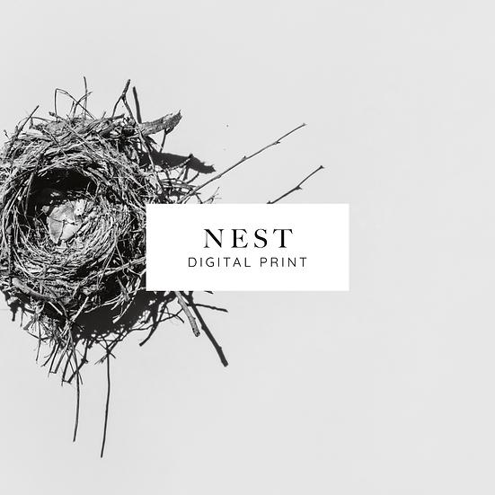 Nest - Digital Print