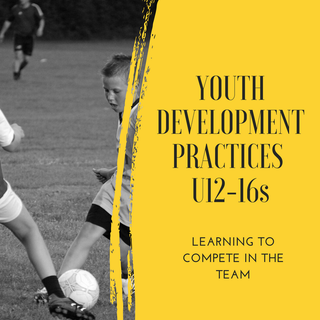 YOUTH DEVELOPMENT PRACTICES.png