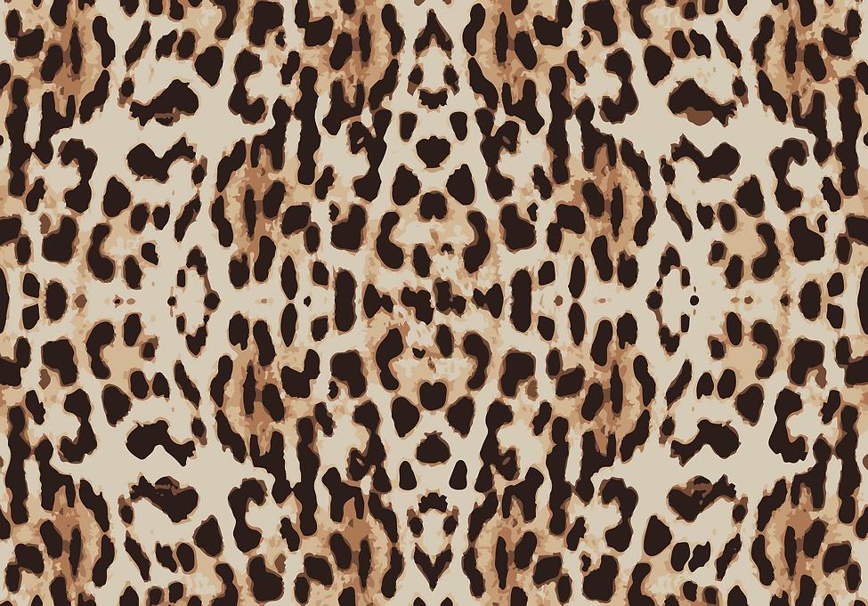 pattern-656044.png