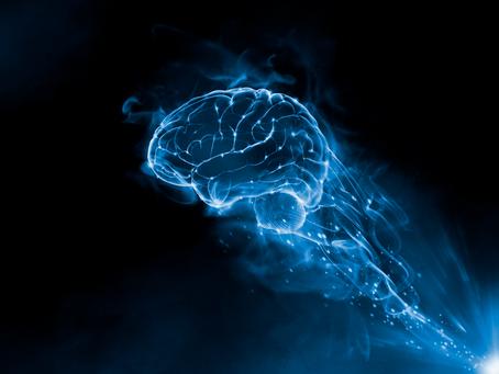 Pesquisa avalia ação de cápsulas de cannabis para tratar doenças neurológicas