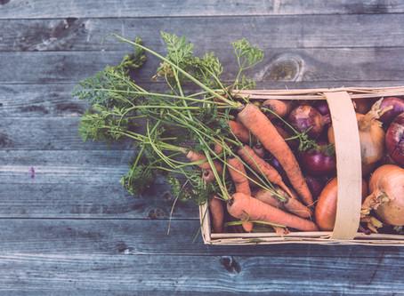 Menu perfeito à saúde de plantas e pessoas