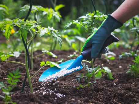Boas práticas de uso de fertilizantes: produzir mais preservando a vida