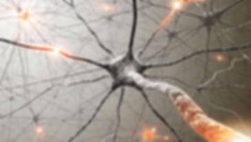 super_imgos_neuronios_se_regeneram.jpg