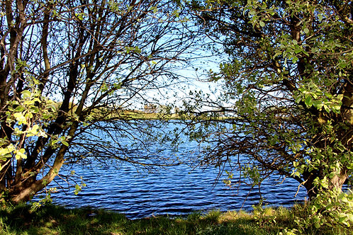 Lagoons in Musselburgh