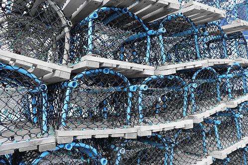 Blue Lobster Pots, Dunbar