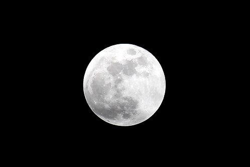 Bright Full Moon