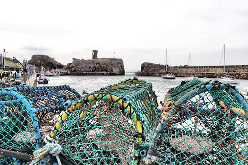 Dunbar Harbour, East Lothian
