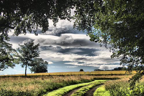 Field in East Lothian