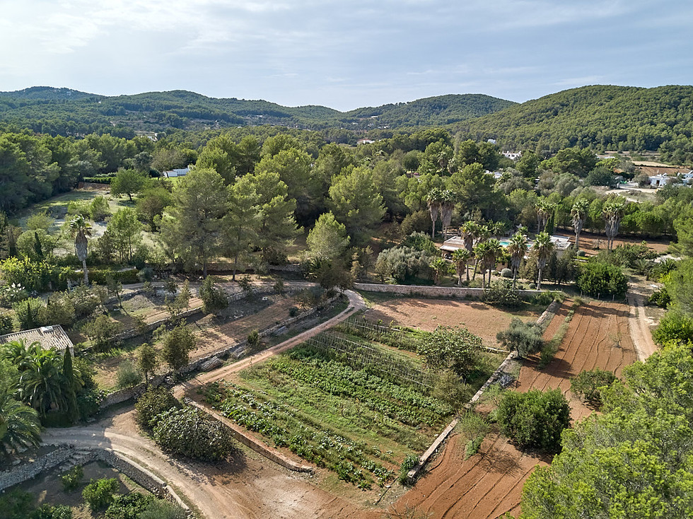 can-riera_drone_200924_07_1200px.jpg