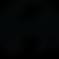 PuVida Logo - zwart.png