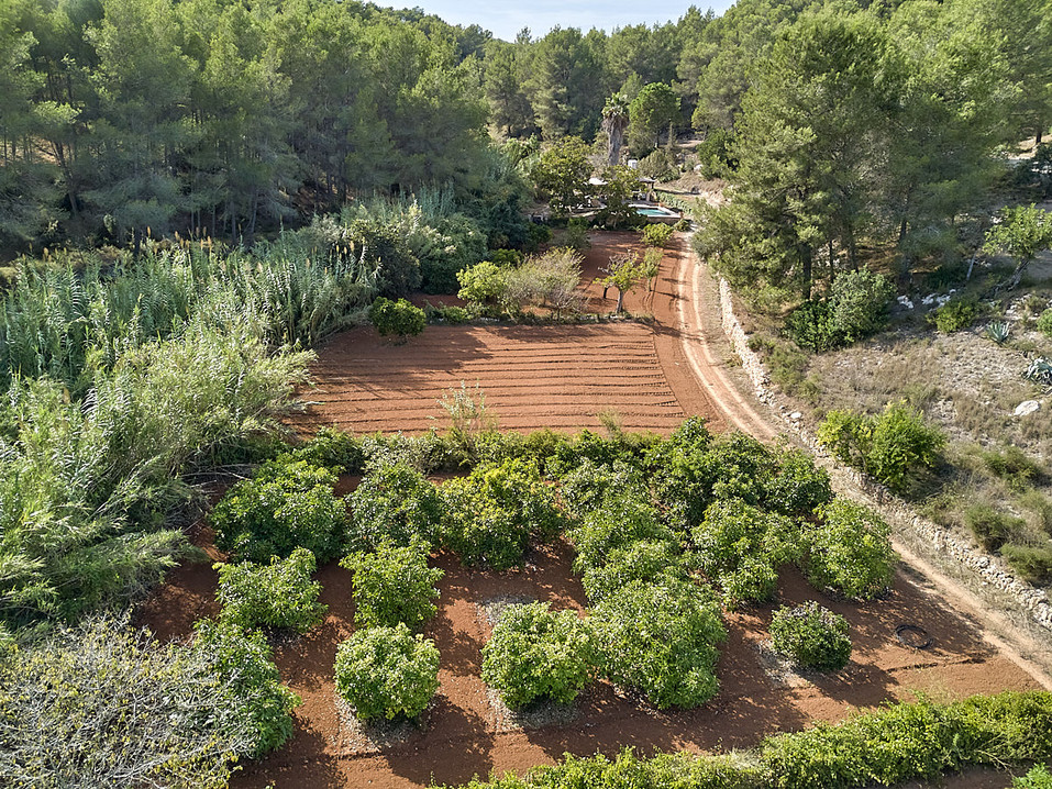 can-riera_drone_200924_19_1200px.jpg