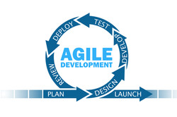 AgilePM Project Management