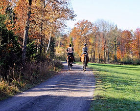 Two woman riding by radkin from Pixabay