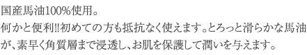 bayu_02_txt-02.jpg