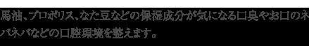 bayu_hyoutan_22_txt.png