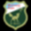 logo-walferdange.png