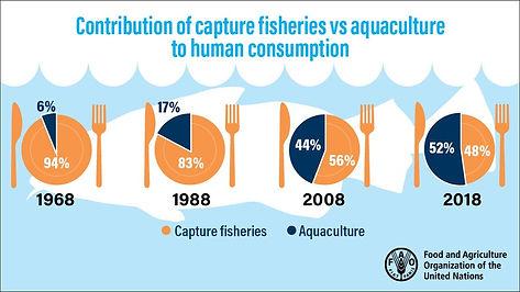 AquacultureSOFIAJune2020ReportGraphic.jp