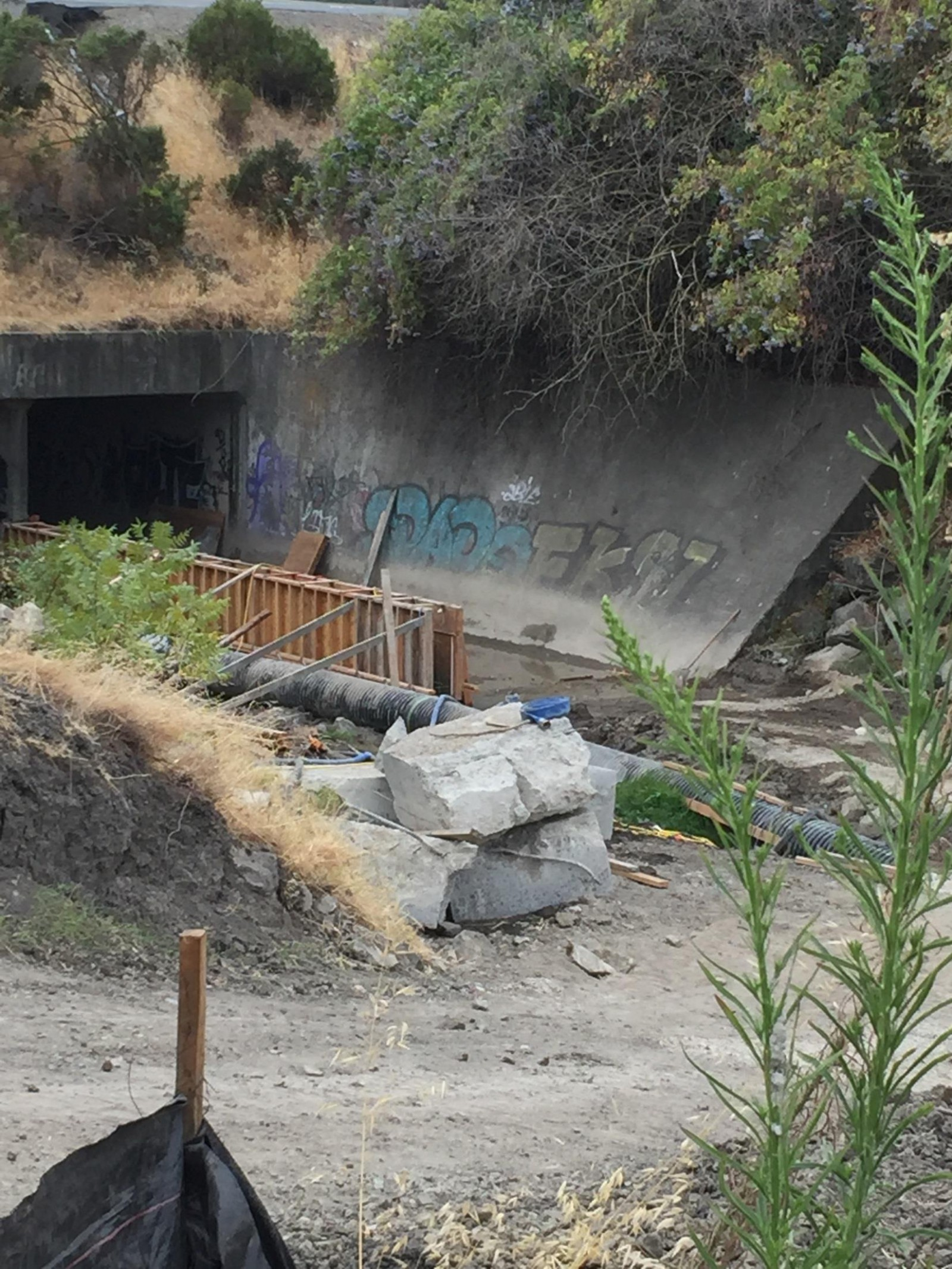 pinole-creek-fish-passage-project-summary_082916