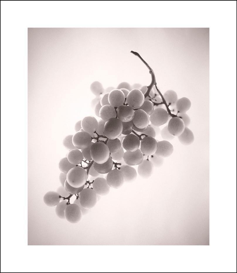 grapes | $350